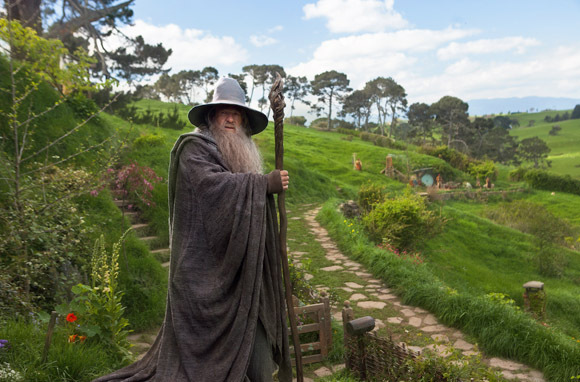 gandalf standing in front of the Shire - Lord of the Rings